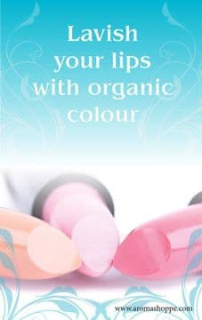 Learn how to make Lip Makeup - e course