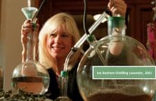 The Art of Distillating Floral waters/Hydrosols/Hydrolats